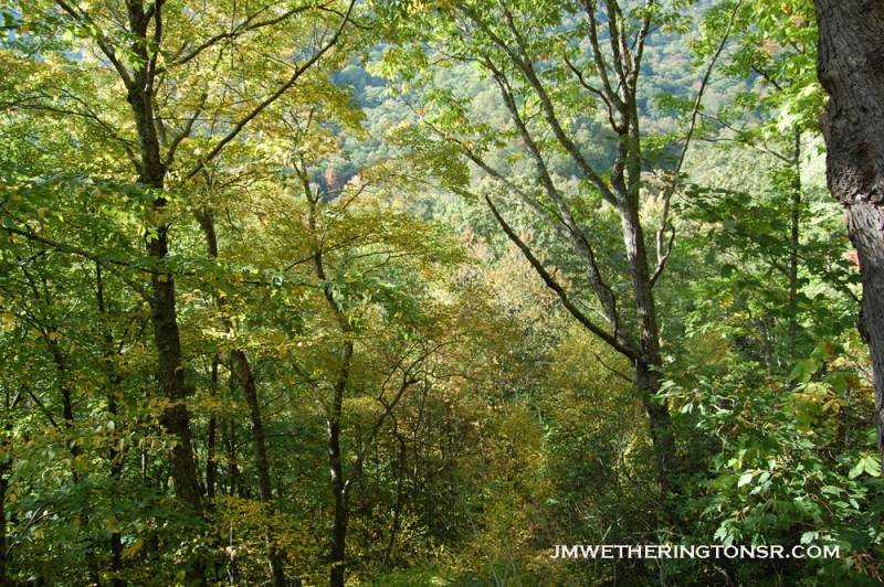 2013_10_06_sheepback_mountain_leaves_changing_13