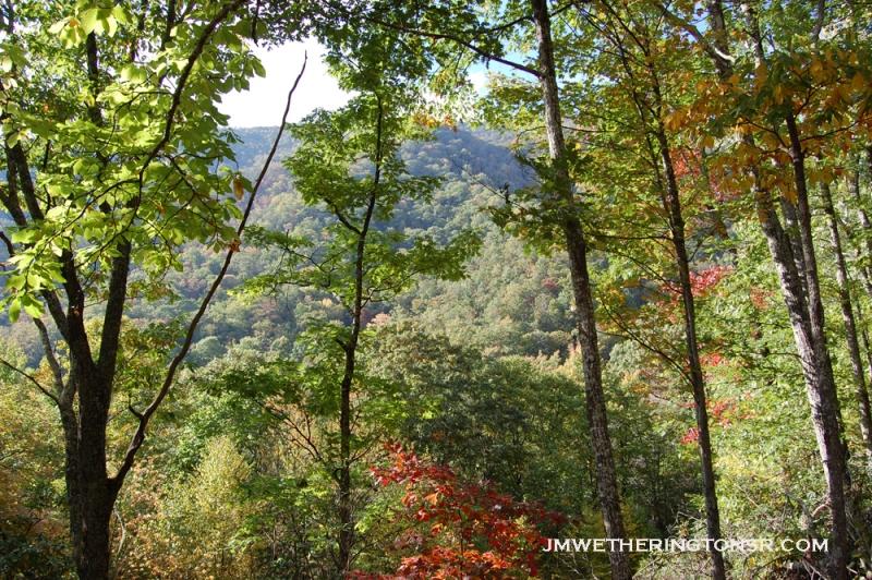 2013_10_06_sheepback_mountain_leaves_changing_14