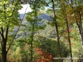 2013_10_06_sheepback_mountain_leaves_changing_14