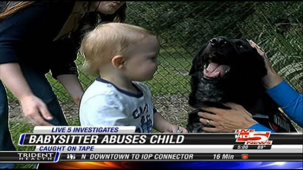 Family Dog Tips Off Parents to Abusive Babysitter