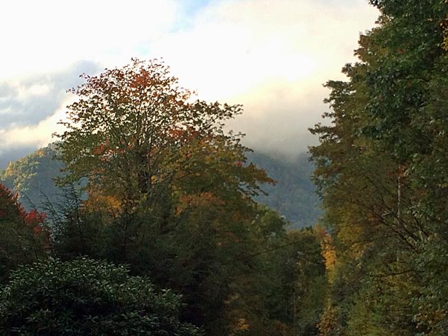 Misty Mountain Morning 3