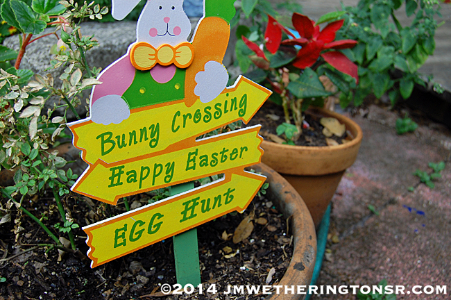 2014_04_18_family_easter_gathering01