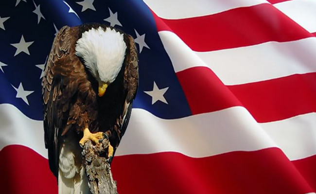 memorial_day_flag_eagle650px