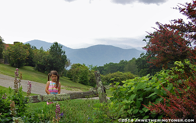Abby by the flowers with mountains in the background.