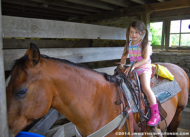 The best part of all, at least for a few seconds, was that Abby got to sit on a real horse.