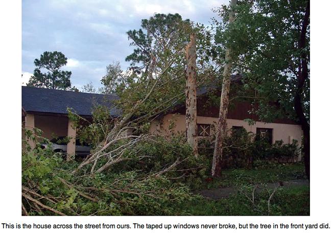 Fallen tree on house/