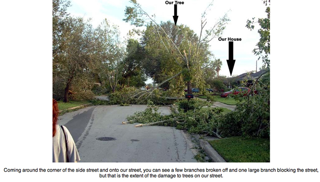 Showing that our street escaped the tornado during Hurricane Charley.
