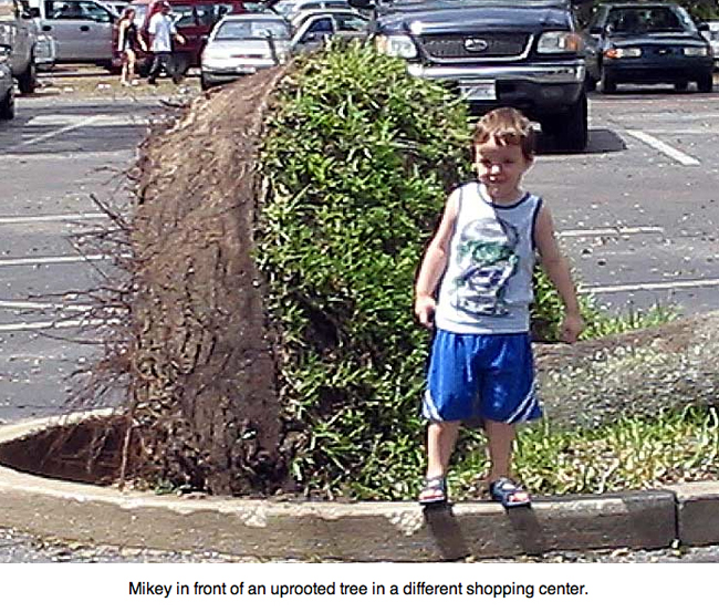 My grandson at age 4 standing by an uprooted tree in a shopping center.