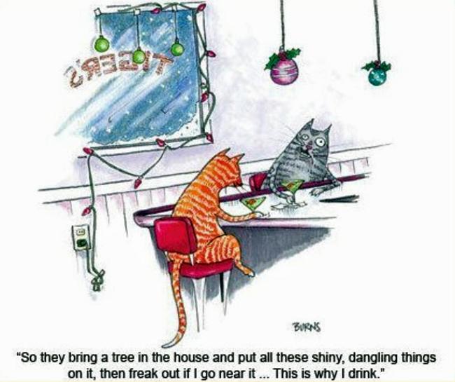 Cats drinking in bar cartoon