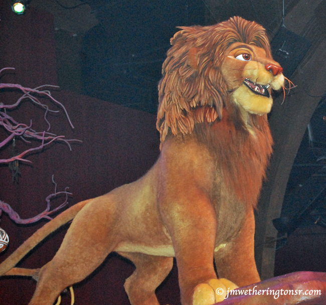 Simba at Disney Animal Kingdom