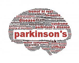 Brain shape with Parkinson's Disease symptom words