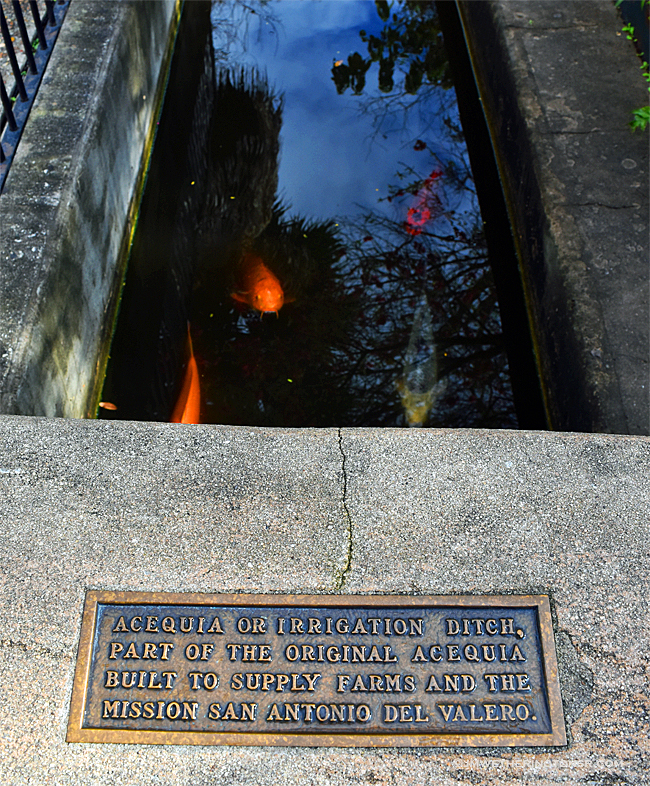 Close-up of plaque and fish in irrigation ditch