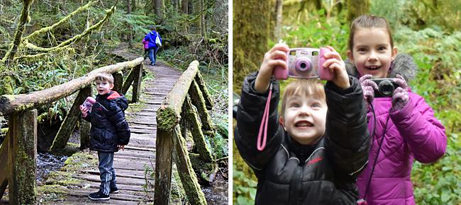 Mt. Rainier National Forest Rainforest Loop Trail.