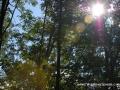 2013_10_06_sheepback_mountain_leaves_changing_04