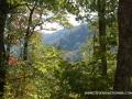 2013_10_06_sheepback_mountain_leaves_changing_05