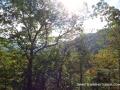 2013_10_06_sheepback_mountain_leaves_changing_09